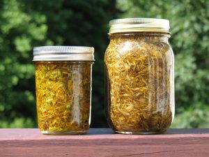 macerat-huileux-arnica